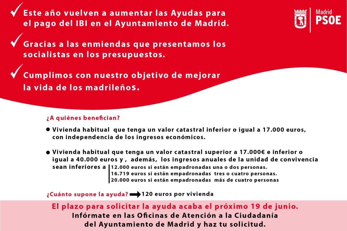 Ayudas IBI Madrid